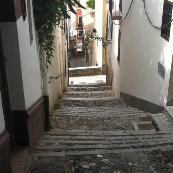 Pasearemos por el Realejo, los monumentos y las plazas para detenernos en la historia de sus personajes y acontecimientos. En definitiva, extraer el sabor de aquella Granada sefardí que aún permanece en su atmósfera y en nuestra memoria histórica.